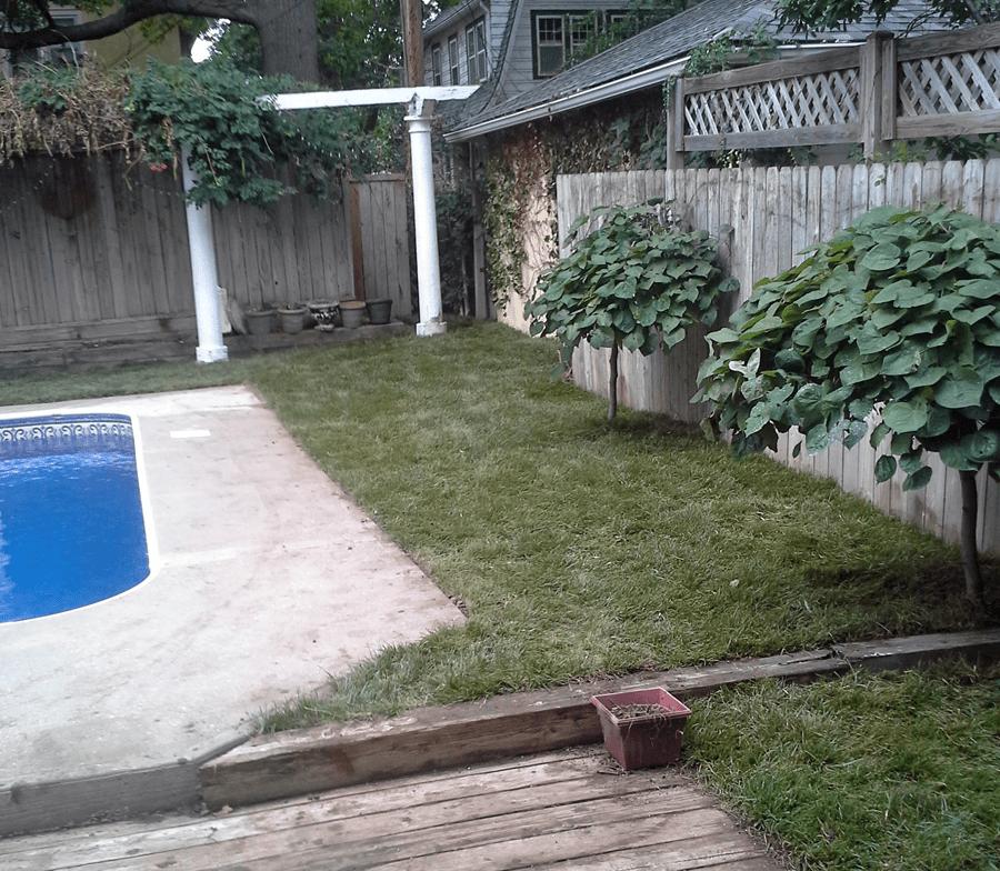 landscape-maintenance-landscaping-Kansas-City-Overland-Park