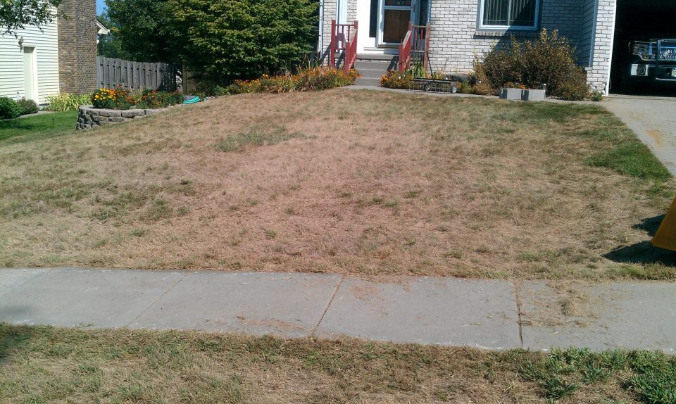 overseeding-aerating-verticutting-leaf-removal-Overland-Park-Leawood