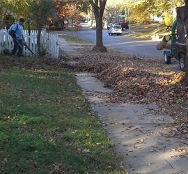 leaf-clean-up-removal-Kansas-City-l
