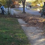leaf-clean-up-removal-Kansas-City-l