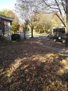 leaf-removal-fall-clean-up-Kansas-City-Overland-Park