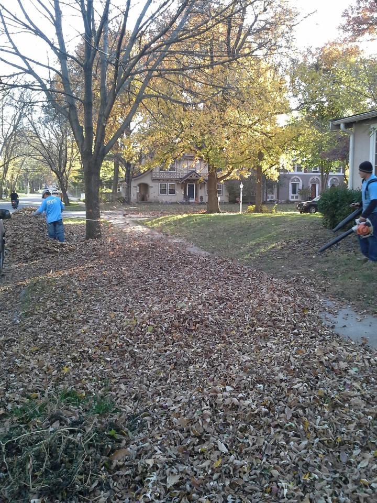 leaf-removal-clean-up-Kansas-City-Overland-Park-Leawood