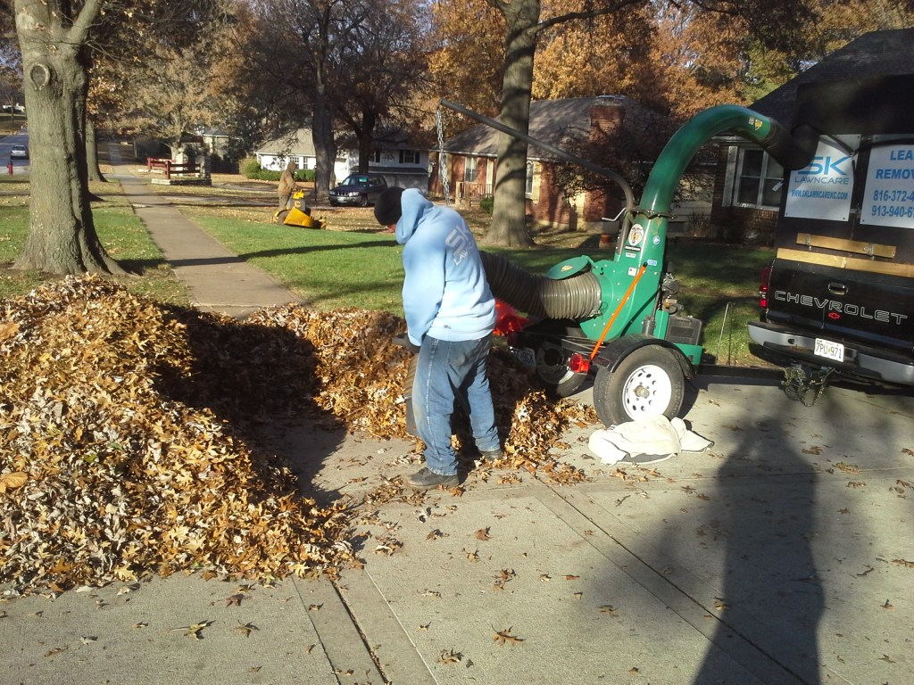 leaf-removal-lawn-cleanup-Kansas-City-Overland-Park-Leawood-KC