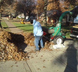 leaf-removal-lawn-cleanup-Kansas-City-Overland-Park-Leawood