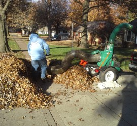 leaf-clean-up-removal-Kansas-City-Overland-Park
