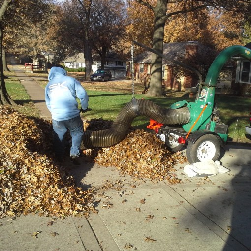 leaf-clean-up-removal-Kansas-City-Overland-Park