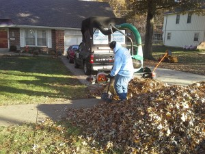 fall-leaf-clean-up-removal-service-Kansas-City