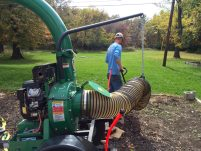 leaf-removal-remove-leaves-Kansas-City