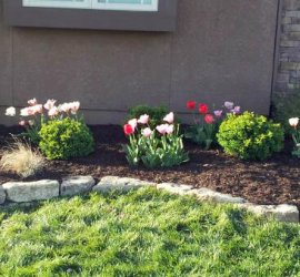 landscaping-maintenance-installation-Kansas-City-Overland-Park-Leawood