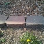 landscaping-Kansas-City-Overland-Park-Leawood-Olathe