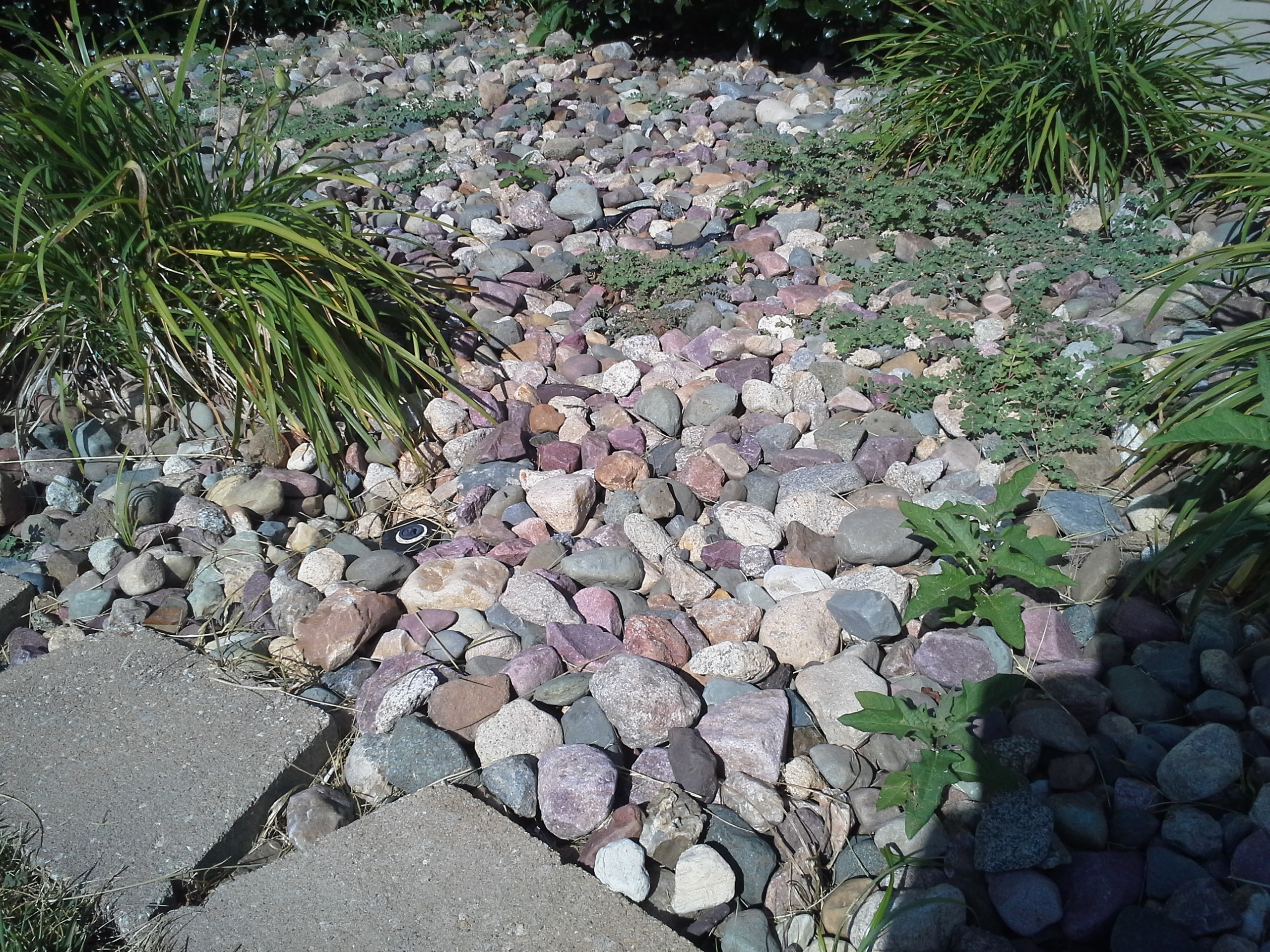 Fall is here kansas city landscape service sk lawn for Landscape installation