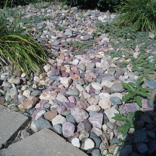 commercial-landscaping-installation-maintenance-Kansas-City