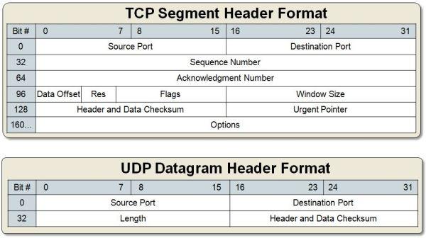 TCP Segment Vs UDP Datagram Header Format – IT Tips for ...