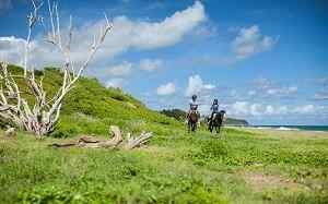 St Kitts Horseback riding, Horseback riding tour