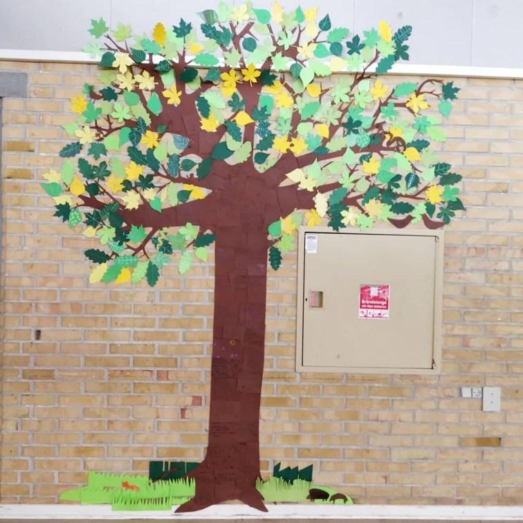 træer i undervisningen