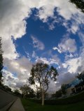 Dramatic clouds in a blue sky. FE lens.