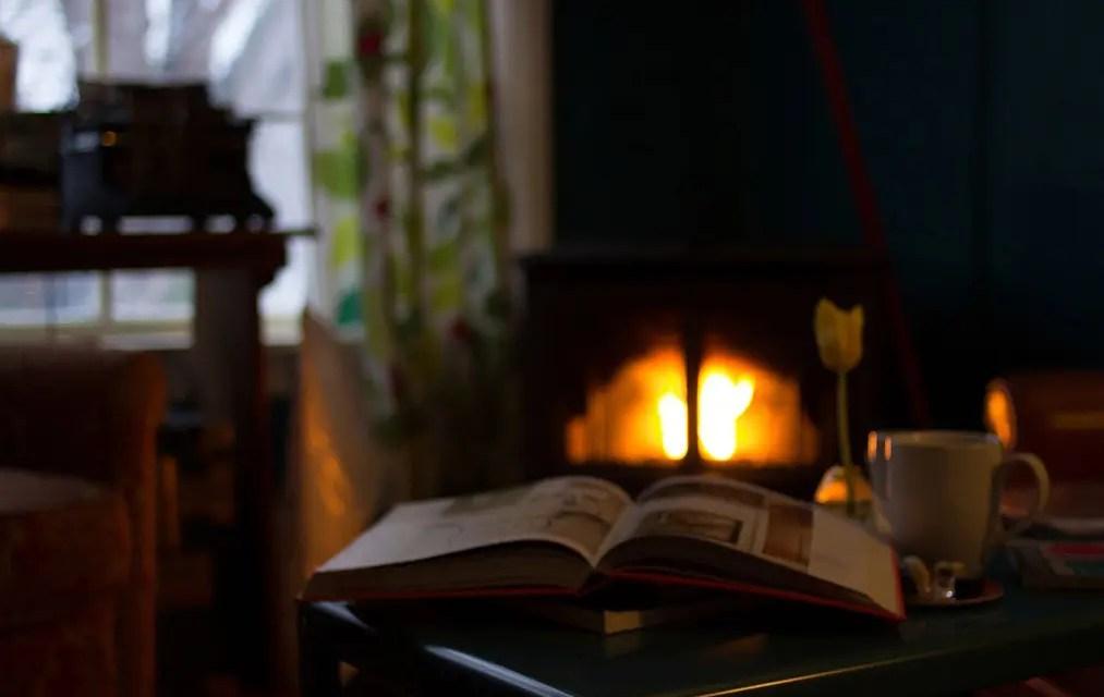 Höstlov en bra tid för läsning – krönika