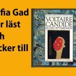 Candide eller optimisten – bokbloggen