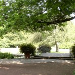 1Stadtpark-Bruecke-068