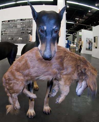 Art Cologne собаки