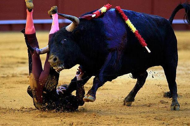 Тореадор Гарсиа раненый быком
