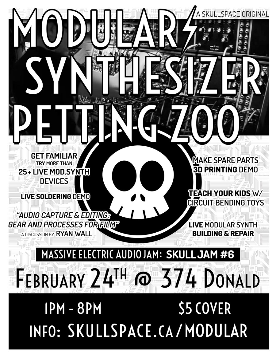 Modular Synthesize Petting Zoo at Skullspace