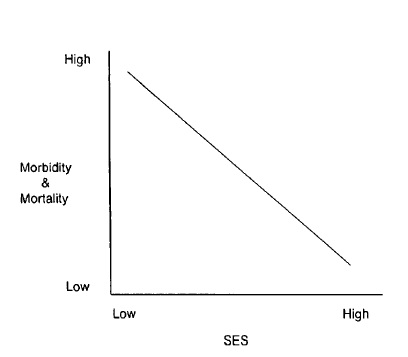 Graph showing how low income and high morbidity & mortality are linked.