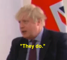 johnson lie 2.png