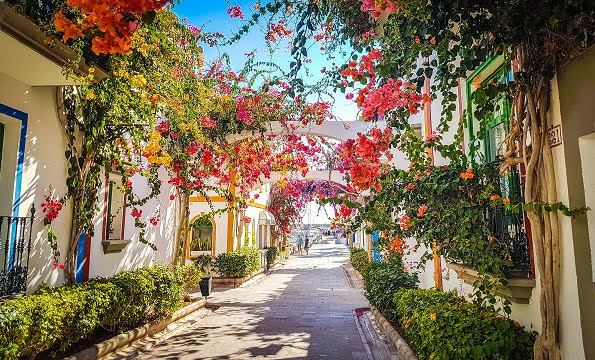 Shore tours Gran Canaria