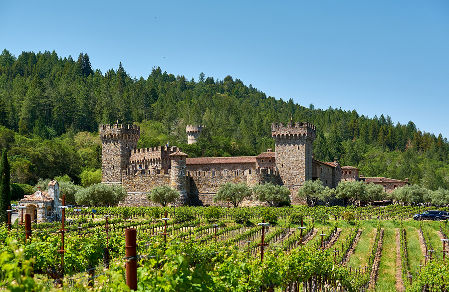 Vineyards with castle in California, USA Napa Sonoma wine tour limo transportation service, San Francisco CA USA