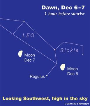 Moon and Sickle of Leo at dawn, Dec. 6, 2020