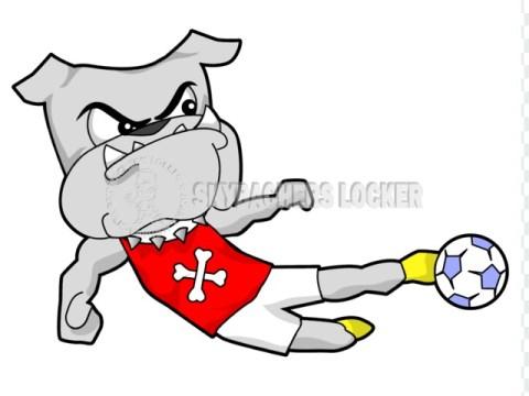 Bulldog Soccer Sidewinder - Skybacher's Locker