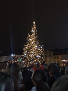 Christmas tree on Zelny Trh square
