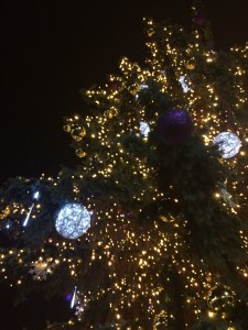 Christmas tree on Zelny Trh square 5