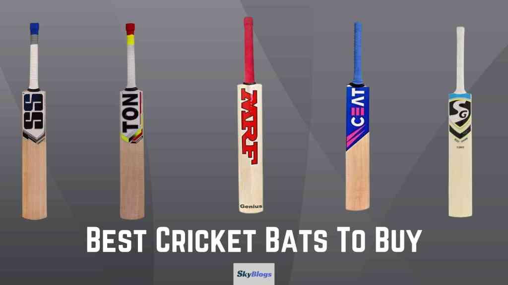 Best Cricket Bats To Buy