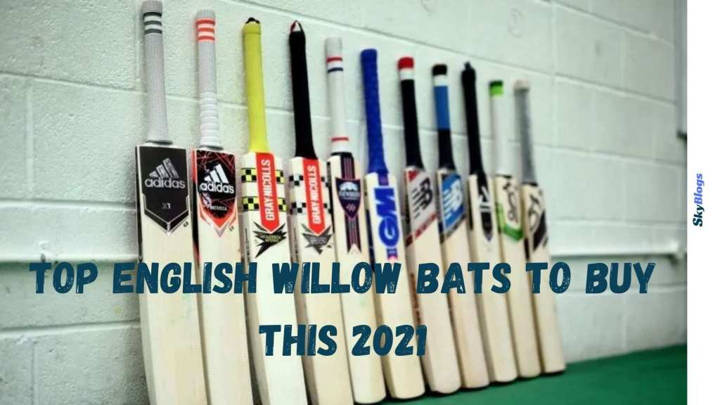 TOP English Willow Bats to Buy This 2021