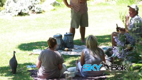 Kirstenbosch Gardens Skybok Video Profiling South Africa