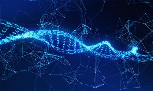 "Blog Article: ""Artificial DNA"""