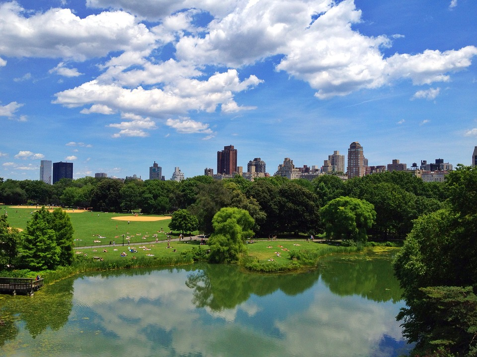 Central Park New York Travel Park City Spot