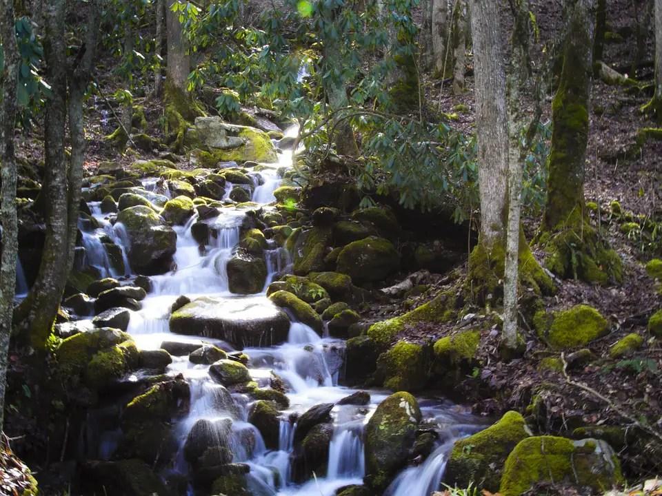 Waterfall Hunting in Brevard, North Carolina