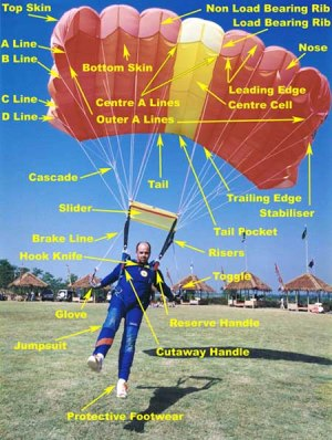 ISP project – Skydiving | For my English ISP project I