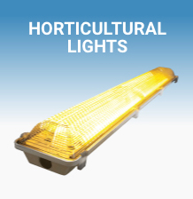 Lighting-Skye-Automation_18