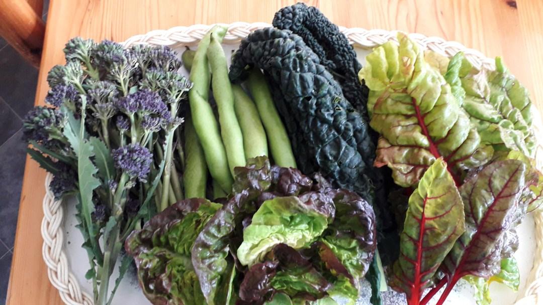 platter of home grown vegetables