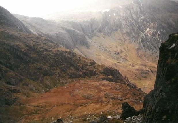 Welsh Beauty #1