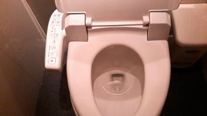 Toilets Around the World: Toilet with Electronic Douche
