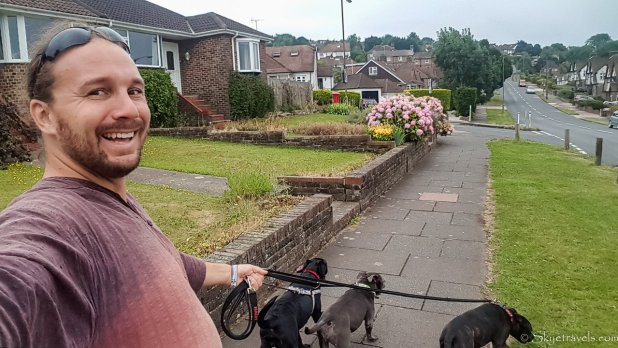 Selfie Walking Dogs in Brighton