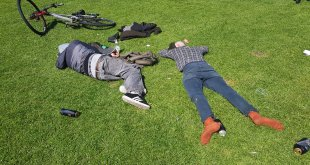 Drunks in the Meadows (Alcoloh Blog)