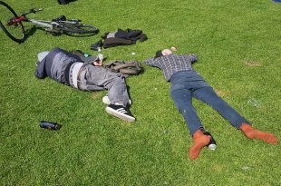 Drunks in the Meadows (Alcoloh Blog)