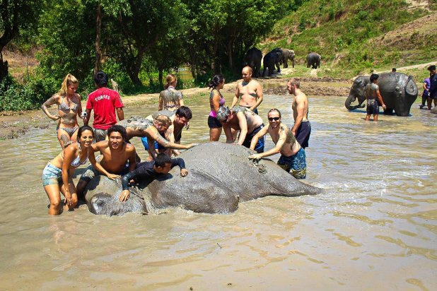 Mudbath Selfie at Elephant Jungle Sanctuary
