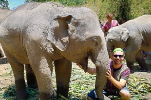 Selfie at Elephant Jungle Sanctuary #2